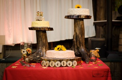 Museum of Appalachia wedding