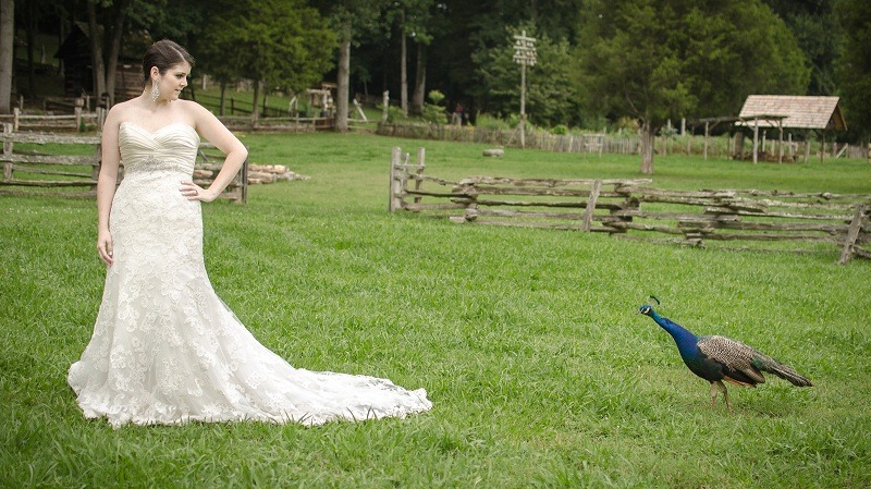 knoxbride_style_shoot_009