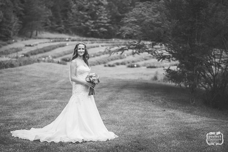 bridal portrait at the lily barn