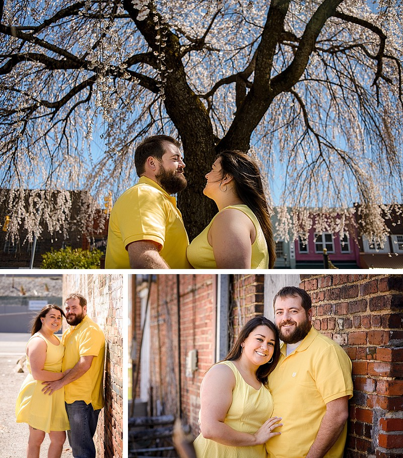 Lafollette engagement session