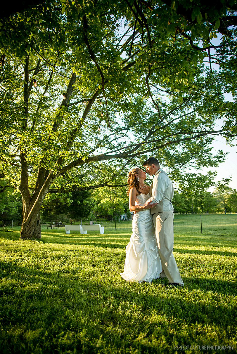 Chattanooga Wedding Photographers Perfect Capture