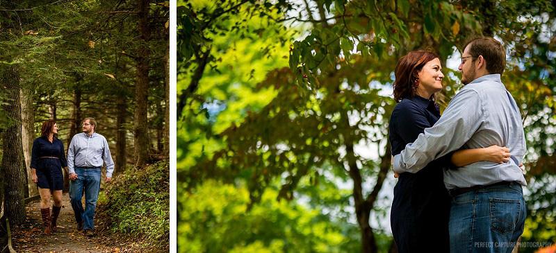 A relaxing walk through the woods