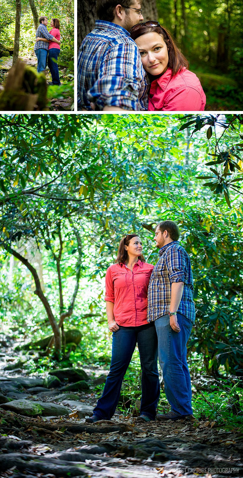Engagement session in the woods