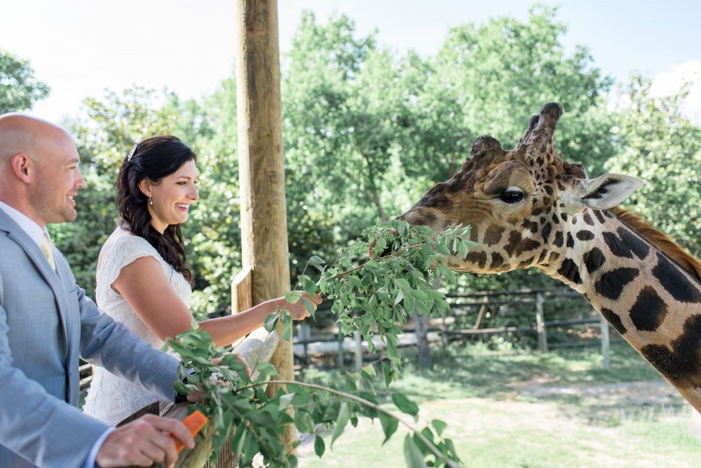Knoxville zoo wedding